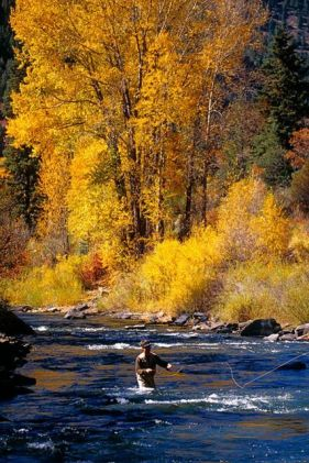 telluride_fly_fishing