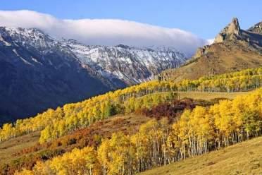telluride_gold_season